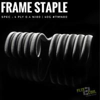 Frame Staple Coil art