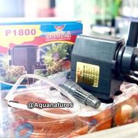 Aquila P-1800 Water Pump