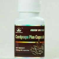 CORDYCEPS PLUS CAPSULE GREEN WORLD TERMURAH