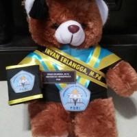 boneka wisuda teddy bear coklat/pink fanta/ungu 30cm + selempang
