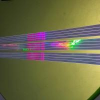 lis pelek hologram