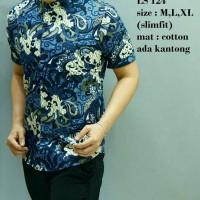 Batik, Kemeja slimfit pria,Baju batik cowok Lengan pendek LS 124
