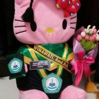 boneka wisuda hello kitty pink 50cm + selempang + buket bunga