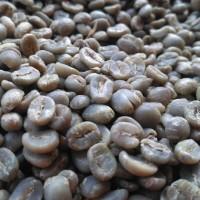 Kopi Argopuro Arabica Fullywash (greenbeans) 1 kg