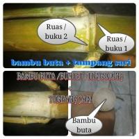 Bambu Buta /Buntet + Tumpang Sari Bertuah alami. pring antik & unik