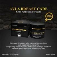 Ayla Breast Care Cream From NASA Crystal X ( Perawatan Payudara )