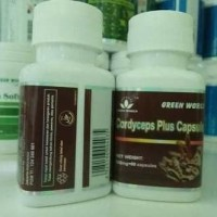 Cordyceps Plus Green World Asli/Obat Asma