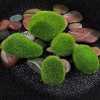 Tanaman sintetis Aquascape Terrarium Marimo Moss Ball Rumput Artificia