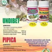Obat Herbal DIABETES Kencing Manis Gula Kering Basah Kolesterol ORI