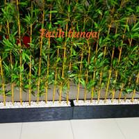 fatih partisi bambu bunga plastik
