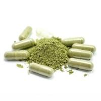 Kapsul Daun Seledri Rempah Herbal Natural Obat Alami