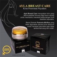 Ayla Breast Care Crim Pembesar dan Pengencang Payudara Original Nasa