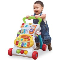 Baby Walker BabyElle Activity Musical 8in1 Push walker Anak Bayi