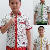 Kemeja Hem Atasan Baju Anak Laki Laki Batik 2504 Balita TK SD