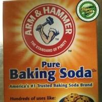 Arm & hammer hamer pure tepung baking backing soda powder 454 gram USA