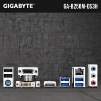 Gigabyte GA-B250M-DS3H Socket 1151 Diskon
