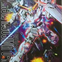 Daban MG 1/100 master grade Unicorn Gundam ova