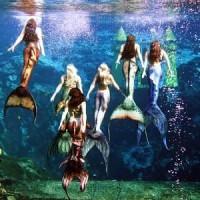 Baju Kostum Renang Mermaid/Putri Duyung Motif CORAK SISIK WARNA