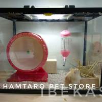 Terarium kandang Hamster syirian / robo / camble aquarium hampot