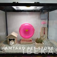 Kandang Hamster Lucu Terarium / Aquarium ukuran besar