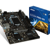 MSI Motherboard B250M PRO-VH