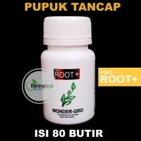 PUPUK TANCAP Wonder-Grow ROOT+ 80 gram, untuk Aquascape