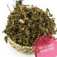 Teh Dandelion Herbal Tea Diuretik Ginjal Liver Pelangsing/Pu Gong Ying