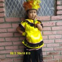 Papua TK | Baju Adat Karnaval Kostum Anak Pria Daerah