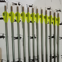 Arrow / Anak Panah Easton Platinum Plus XX75 ukuran 1516