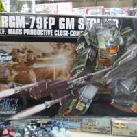Hg GM Striker