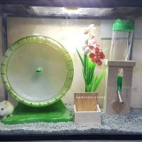 Terarium kandang Hamster aquarium hampot Model Garden