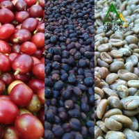 Kopi Argopuro Arabica Natural (greenbeans) 1 kg