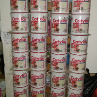 Cat Dulux CATYLAC interior TEARDROP 41124N