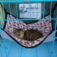 Ayunan kucing - Tempat tidur gantung di kandang kucing