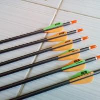 1616 - 12 Pcs Arrow Platinum EASTON (Sudah Dirakit)