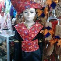 Baju batak anak Tk - pakaian adat sumatra Lk - Pr