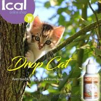Drop Cat Caty Drop Obat Kucing Antibiotik Terdaftar DEPTAN