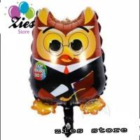 Balon foil Graduation owl / burung hantu mini