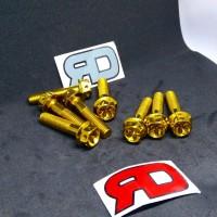 Baut Stainless Gold Coating M8x35 untuk baut shock belakang