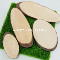 BIG Potongan kayu pohon PINUS CHIP bahan craft hiasan taman terrarium