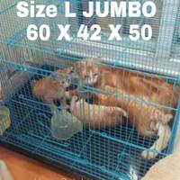 Kandang Kucing Size L (60X40X50)