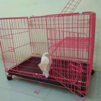 Kandang kucing Besar Tingkat ukuran p75xL48xT55,HUSUS EXPEDISI.