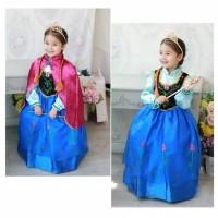 Princess Anna Elsa Frozen Dress Costume | Baju Kostum Putri Anak 2