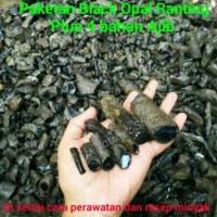 Terlaris PAKET GILA BLACK OPAL RANTING SETENGAH KG PLUS 4 BAHAN BATU