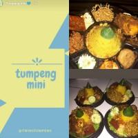 Tumpeng Mini / Nasi kuning Box