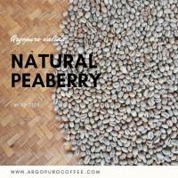 Biji Kopi Mentah Arabika Argopuro Natural Peaberry 30kg