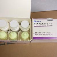 GIC CHINA / GLACIONOMER CEMENT / BAHAN TAMBAL GIGI