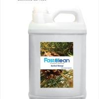 FastClean Karbol Wangi (Pine)