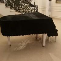 cover piano grand / baby grand