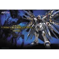 Gundam Bandai PG 1/60 ZGMF-X20A Strike Freedom Gundam SEED Destiny